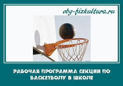 Рабочая программа секции по баскетболу в школе