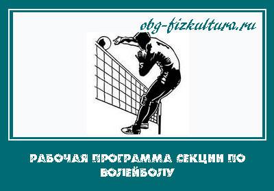 Рабочая программа секции по волейболу в школе