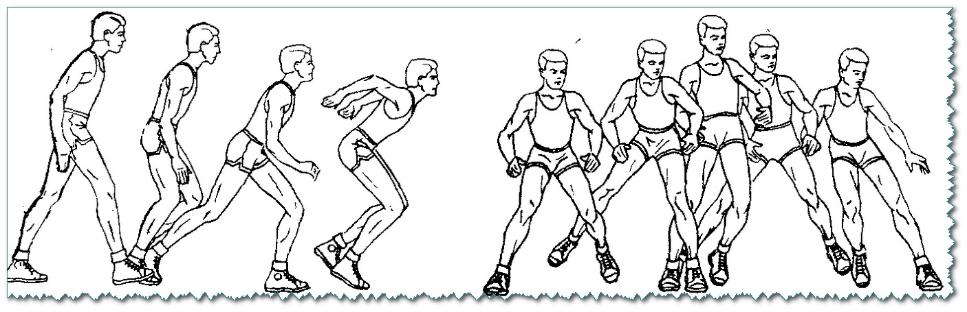 Перемещения в стойке волейболиста