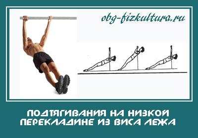 Подтягивания-на-низкой-перекладине-из-виса-лежа